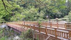 Walking the 東海道五十三次 tkd53 土山